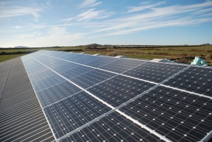 Photovoltaic array at Caerfai farm